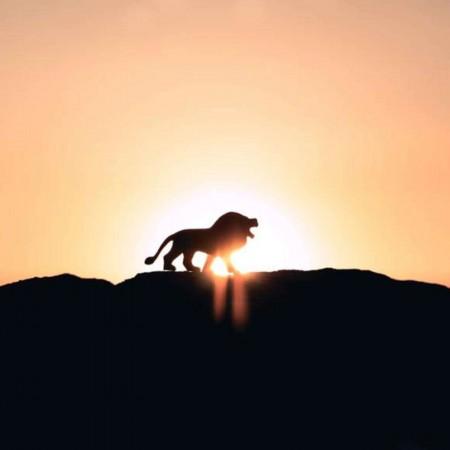 « Le Roi Lion » à redécouvrir au cinéma !